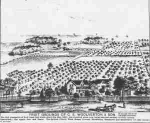 Drawing of Woolverton Farm 1870's.
